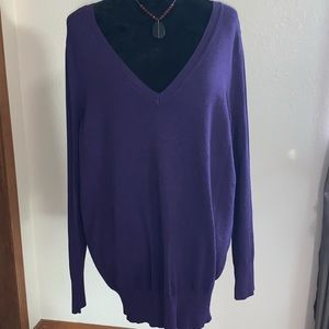 Lane Bryant Purple V-Neck Sweater Size 18/20